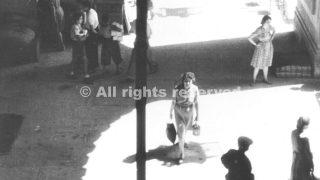 image_3firenze sfollati 1943