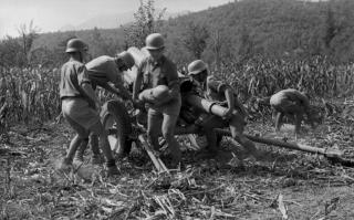German Troops in tropical gear in Maze field with artillary