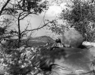 Mount Delle Formiche 1945