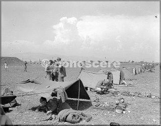 gen 1945 accampamento zona pisa decima divisione di montagna