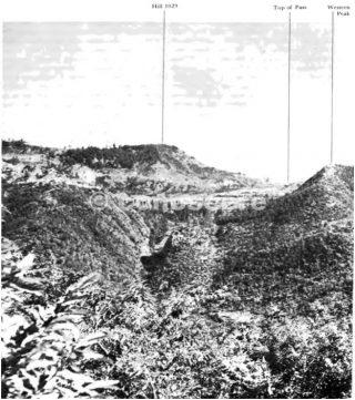 linea gotica MONTE ALTUZZO AREA on right flank of the Giogo Pass
