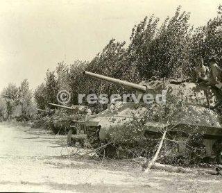 Luglio 1944 Semoventi M10 del 701 Battaglione cacciacarri in postazione nei pressi di Ponsacco vicino a Pontedera_wwii