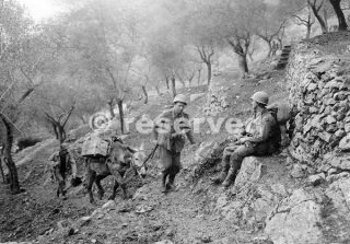 45th Infantry Division in Venafro Italy 1943_wwii