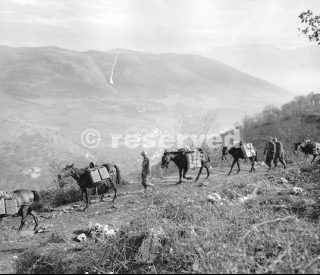 Venafro-Italy-1943_wwii