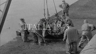 BARI Recupero dei cadaveri dopo l'attacco tedesco