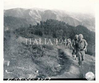 Quinta Armata Mt Verruca 1944