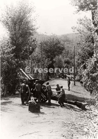 October 1943 A German gun position in a vineyard during the Allied advance to Naples_napoli guerra