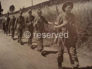 arezzo Soldati Neozelandesi scortano prigionieri Tedeschi