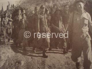 arezzo prigionieri Tedeschi foto