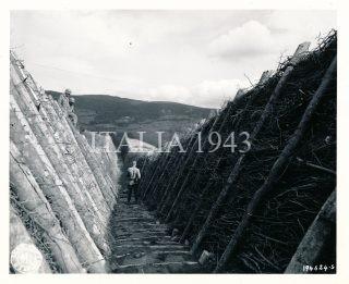 Anticarro a sud del Passo Futa sulla linea gotica dei Monti Appennini